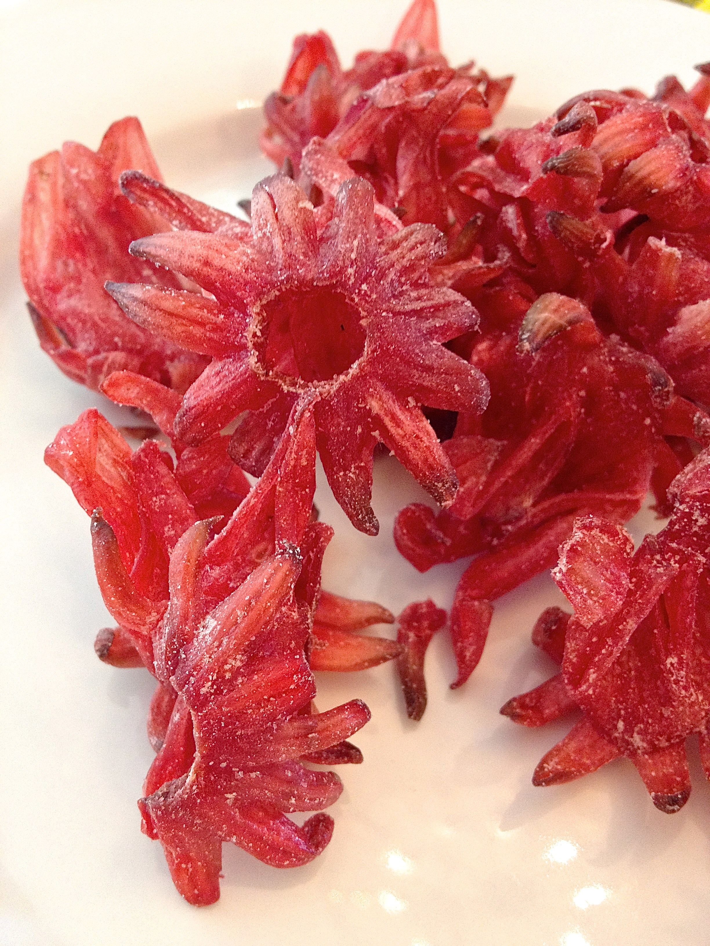 Dried hibiscus flowers make a tasty snack no really omnivorous what izmirmasajfo Images